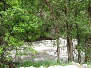 Utah Stream